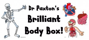 paxtons body box 2
