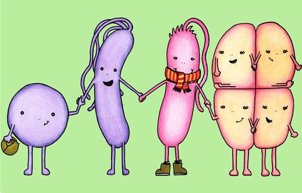 meetthemicrobes